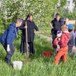 Яблоню сажали отец Андрей и Дмитрий Кудин, папа шестилетней Танечки Кудиной, ушедшей от нас почти два года назад...