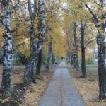 Осень в городе - это всегда так: романтично, красиво и... пошлите уже листьями шуршать;)